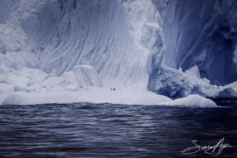 161216-SA-OW-iceberg-study-007-3095