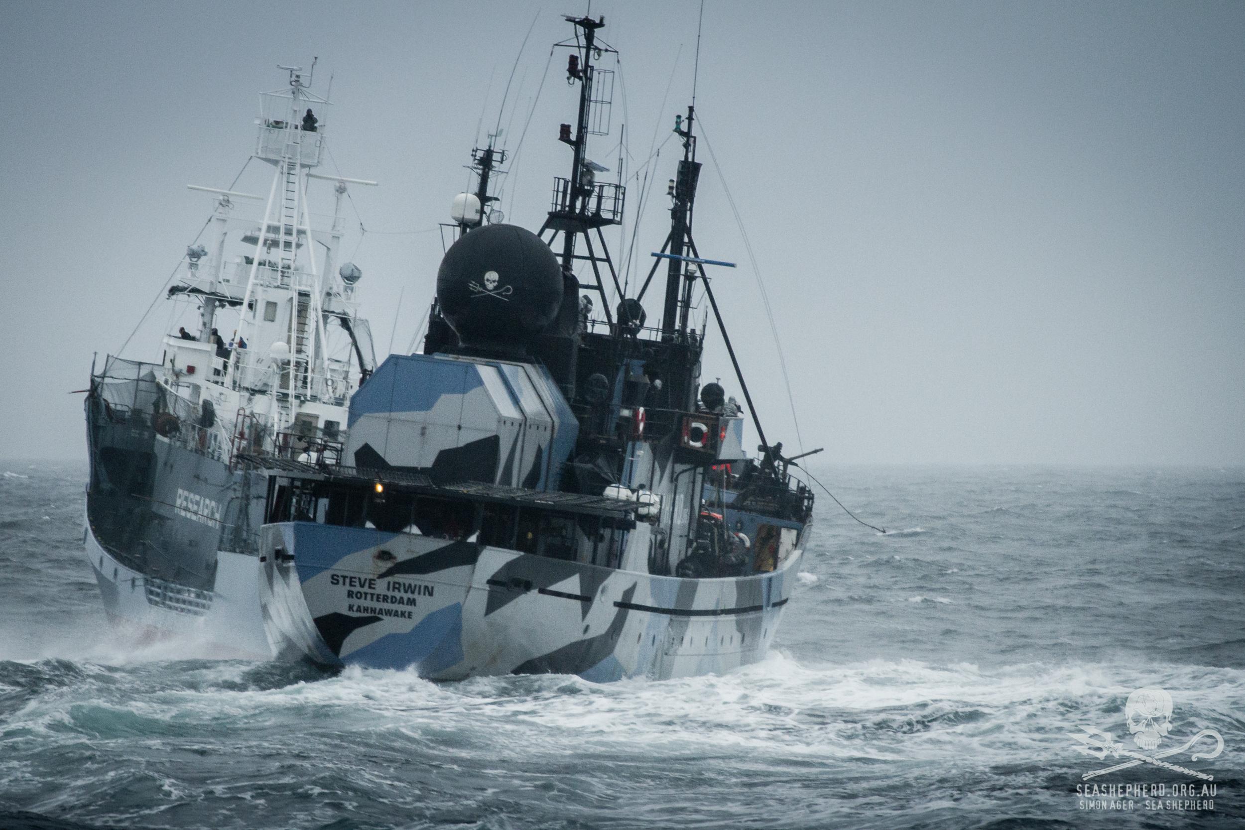 140202-SA-Yushin-Maru-harpoon-vessels-attack-prop-foul-Steve-Irwin-Bob-Barker-IM