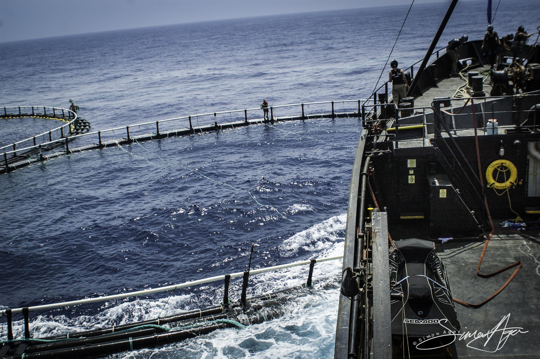 SA Libya Libyan Waters Sea Shepherd Releasing Bluefin Tuna Steve Irwin hitting cage Crew 002 2216