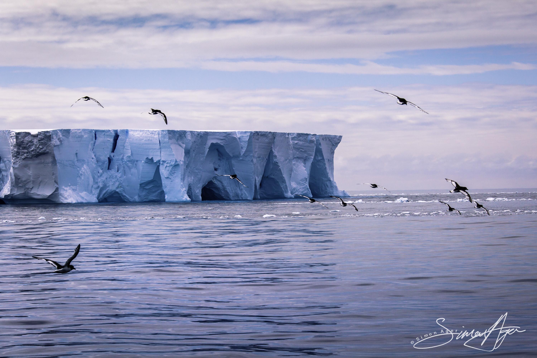161216-SA-OW-iceberg-study-004-3151