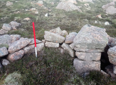 Site in Focus - The Mystery of the Stones