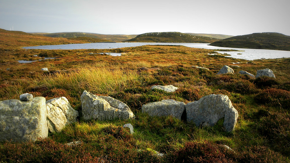 Late Neolithic/Early Bronze Age Homestead at Jamie Cheyne's Loch