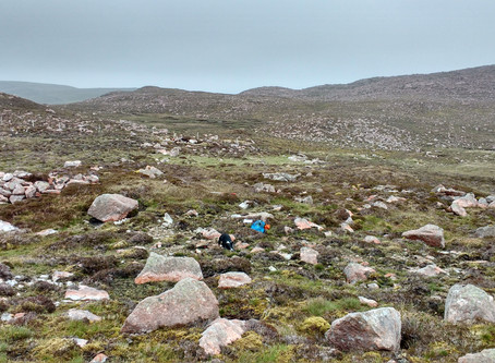 In Depth - On the Trail of Munro