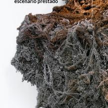 ESCENARIO PRESTADO - ACTO #6
