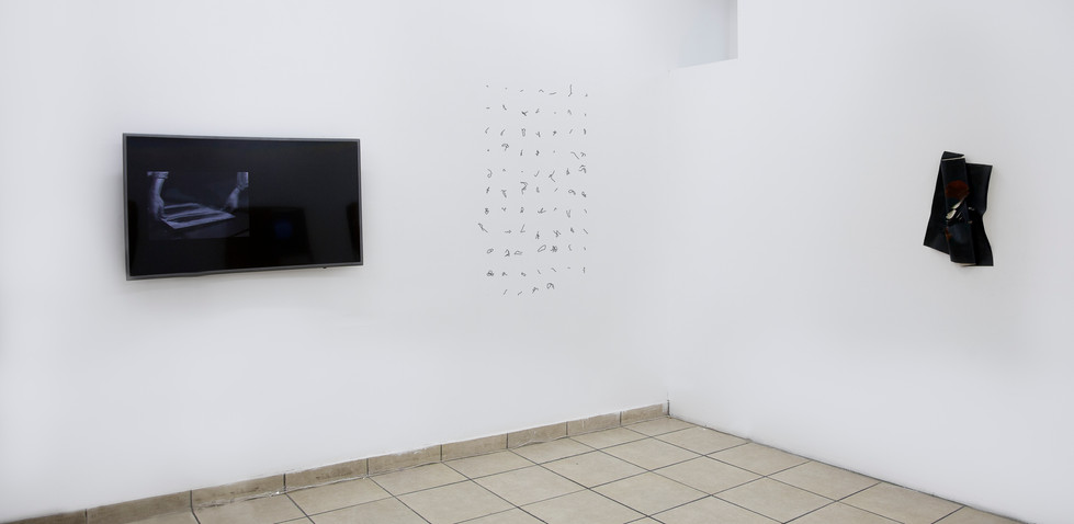 Escribir el espacio 2017, imagen de sala