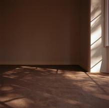 Habitar la luz.