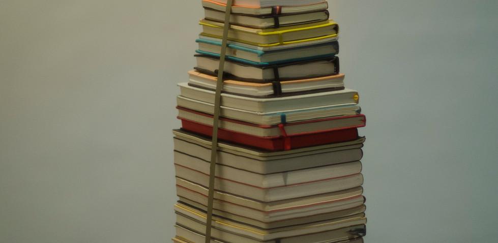 Los motivos Maxi Rossini 2019, Necesito mucho tiempo Instalación de cuadernos