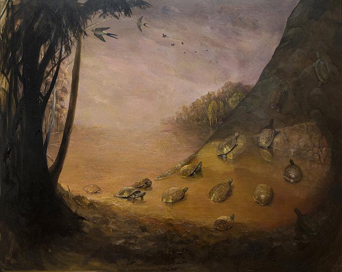 El despertar de los insectos- Lula Mari