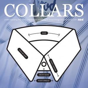 Collar my world