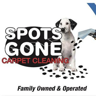 Deep Clean Carpet Cleaning North Branch Mn