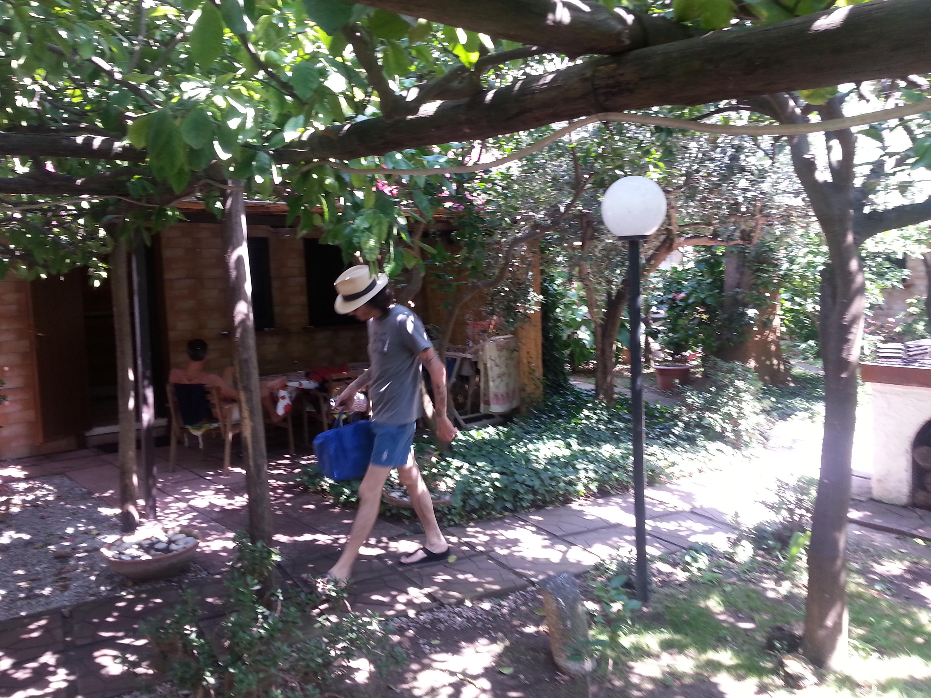 Veranda di fronte a limoneto