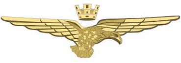 brevetto pilota m.jpg