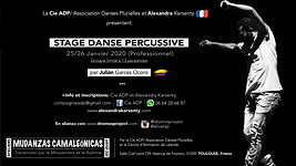 STAGES DANSE PERCUSSIVE 25_26 JANVIER 20