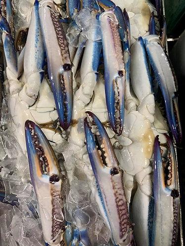 Raw Blue Swimmer Crabs