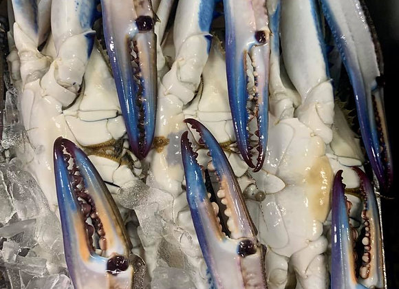 Raw Blue Swimmer Crabs (min. 250G)