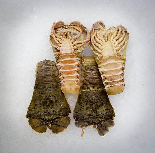 Cooked Balmain Bugs