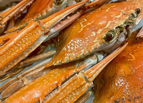 Cooked Blue Swimmer Crabs (min. 250G)