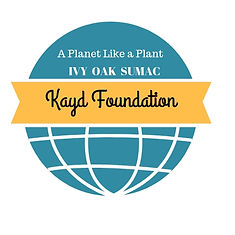 Kayd Foundation 2.jpg