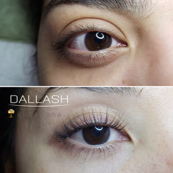 LASH LIFT DALLASH