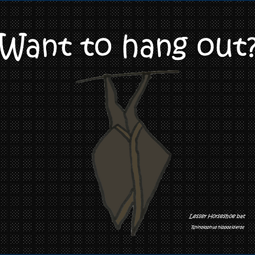 Want to hang out?