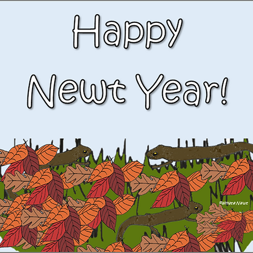 Happy newt year