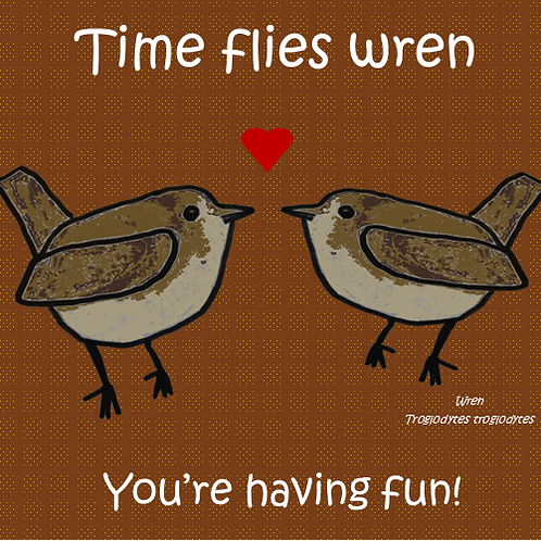 Time flies wren you're having fun