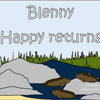 Blenny Happy returns