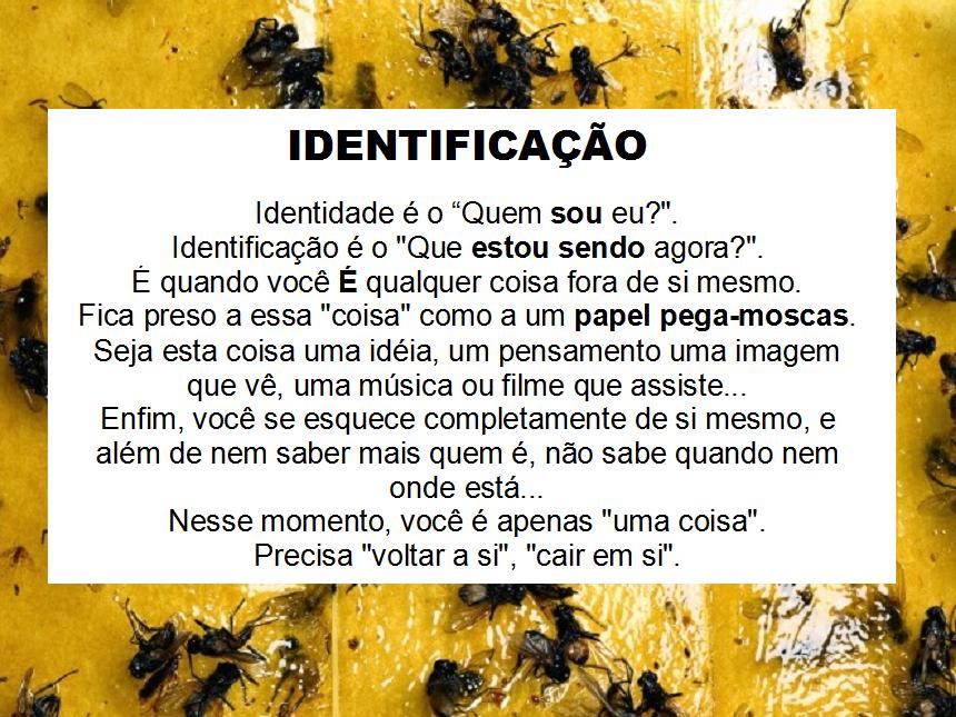 Atualidades_Identificação3
