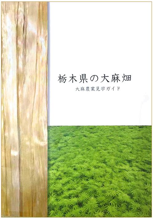 栃木県の大麻畑 大麻農業見学ガイド