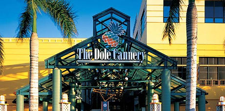 JKC Wellness at The Dole Cannery