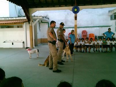 Cães adestrados pela Guarda- Portuária-Pré