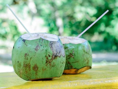 Água de coco: benefícios para a sua saúde