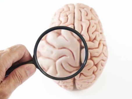 Direito x esquerdo: saiba o que faz cada lado do cérebro