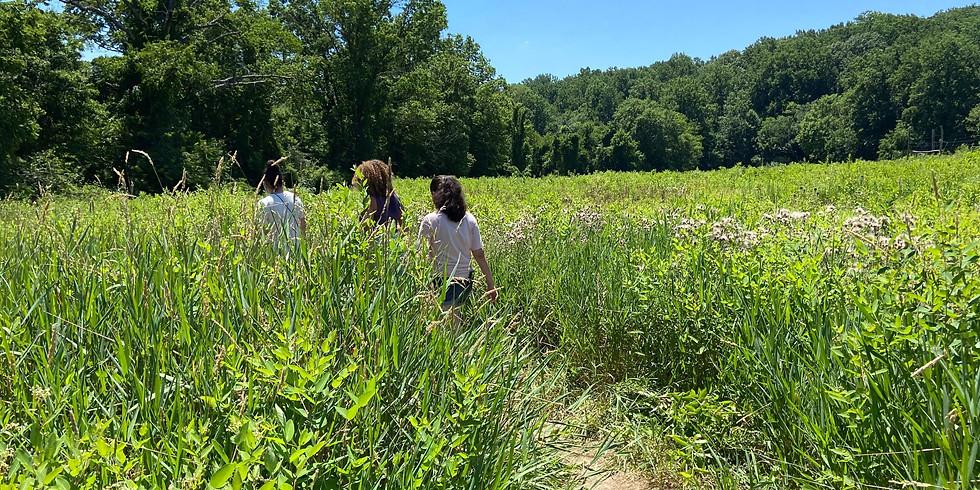 August Exploration Walk: The Underground Railroad Trail (1)