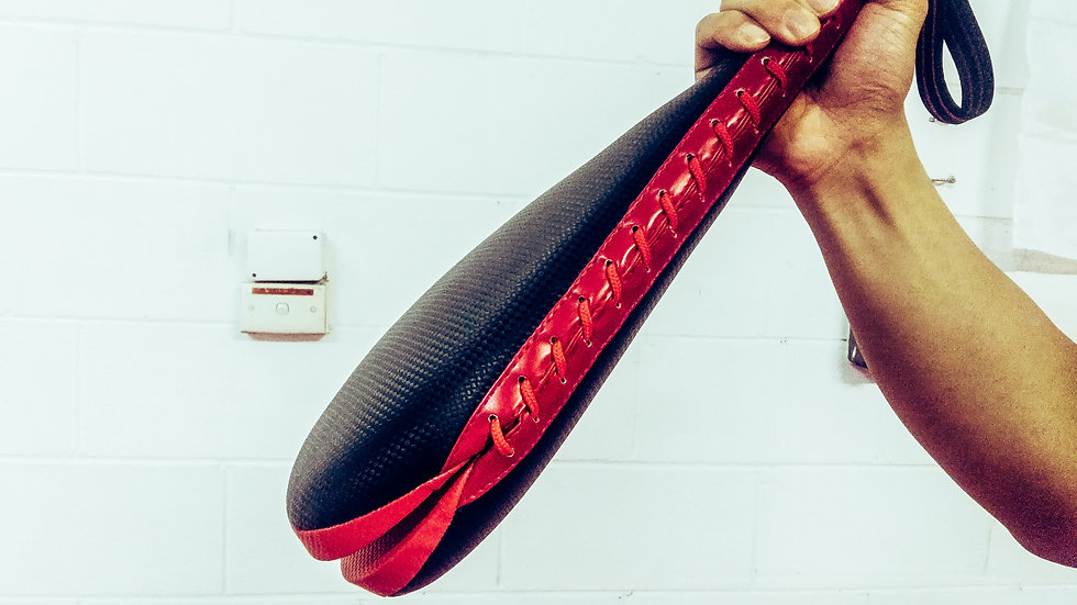 Martial Art double kick pad