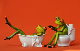 One frog on the toilet, another frog lounging in a bathtub.