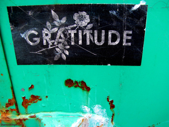 Attitude is Gratitude