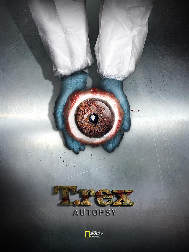 T.Rex Autopsy
