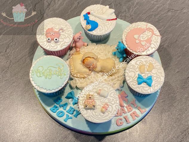 CVE-256-Baby-Cupcakes.JPG