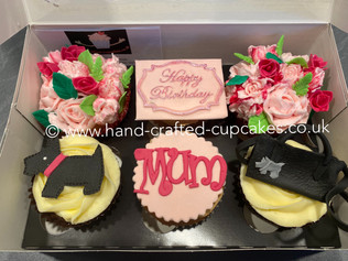 BCC-205-Birthday-Cupcakes