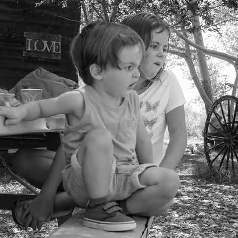 Family Photography session at a Farm in Boulder Colorado - Whitakers