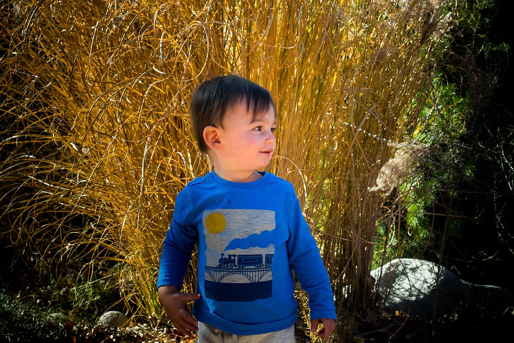 Family Photographers Near Me – Boulder, Colorado – Candid photos of Kids