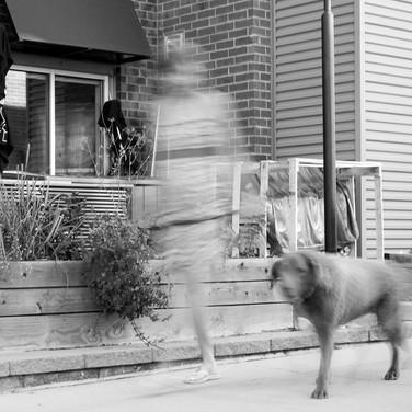 Dogs of Peloton-32.jpg