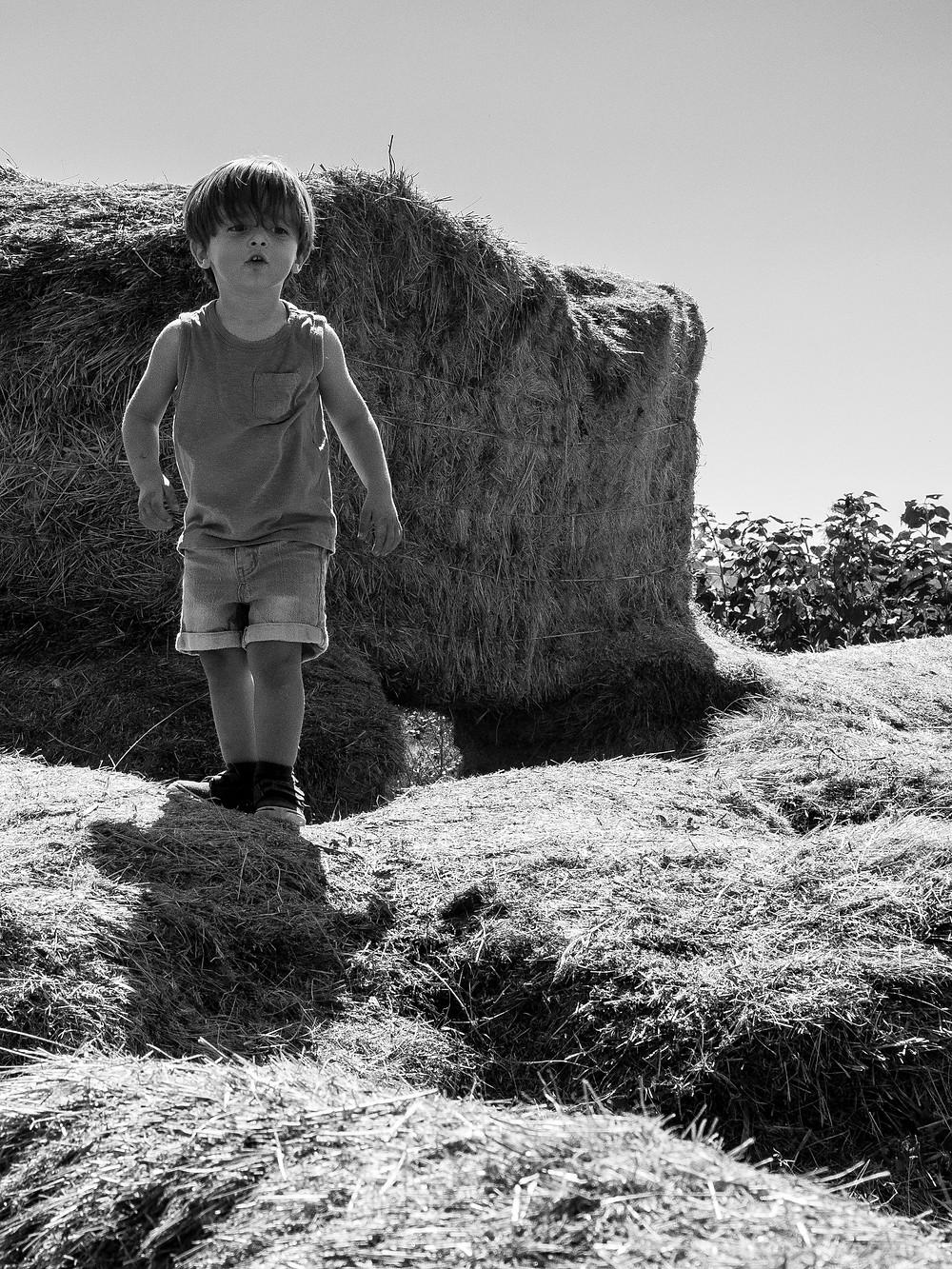Family Photographers Near Me – Boulder, Colorado Family Photographer – Outdoor Photography