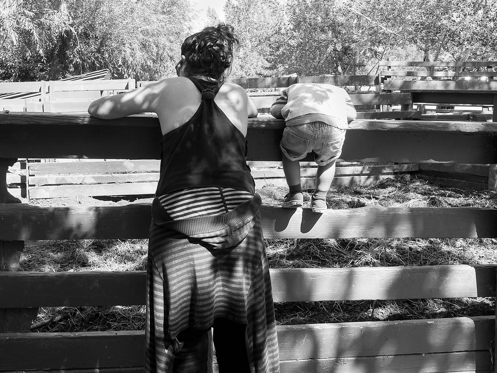 Family Photographers Near Me – Boulder, Colorado – Unposed Photos of Families
