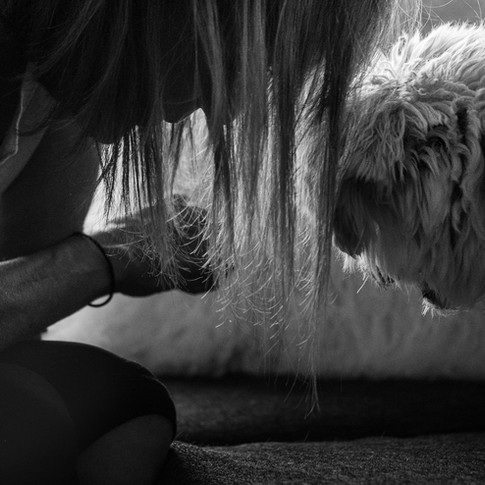Dogs of Peloton-18.jpg