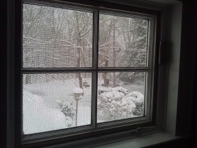 See what I mean about the snow?