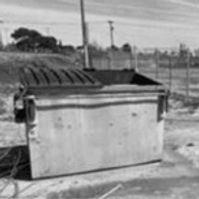 """""""The Dumpster Scene"""""""