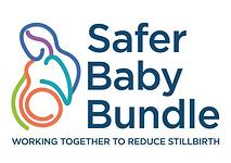 SaferBabyBundle.png