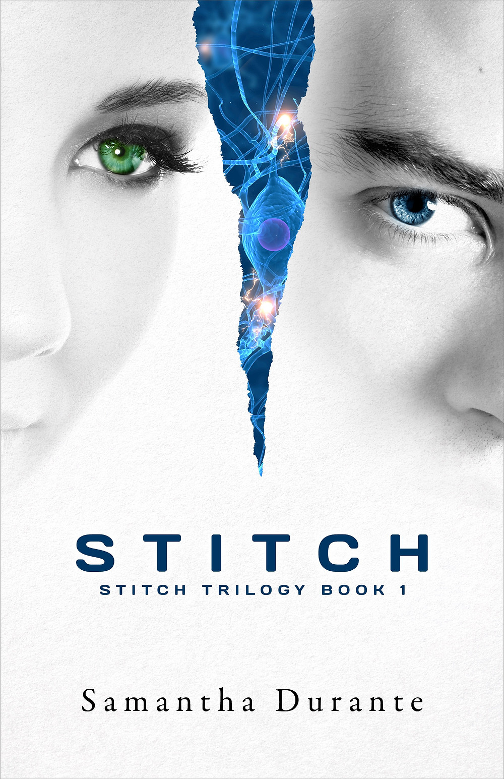 Book Cover Art for Stitch